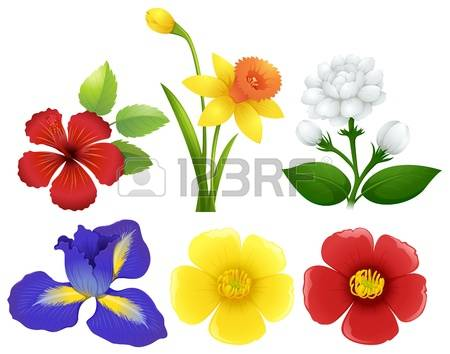 20,999 Group Of Flowers Cliparts, Stock Vector And Royalty Free.