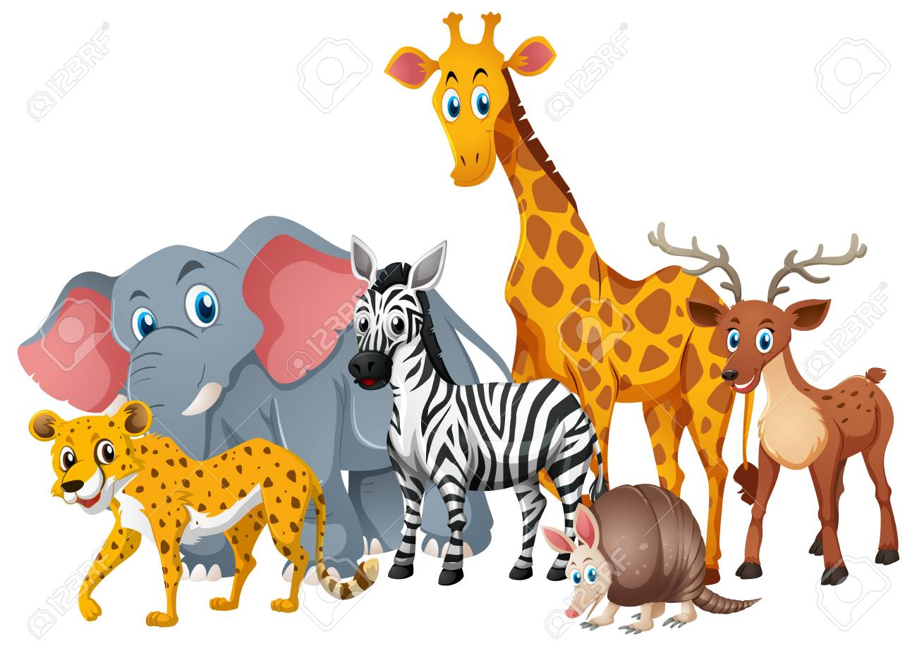 Wild animals together in group illustration.