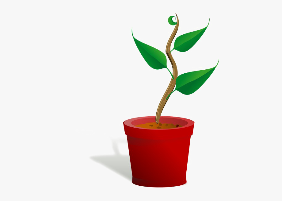Growing Plant Download Free Clipart Hd.