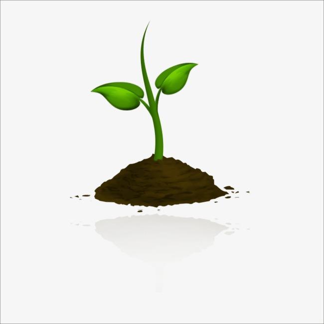 Growing plant clipart 4 » Clipart Station.
