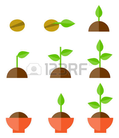 49,308 Growing Stock Illustrations, Cliparts And Royalty Free.