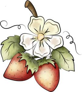 Art Image: A White Strawberry Blossom with Two Growing Strawberries.