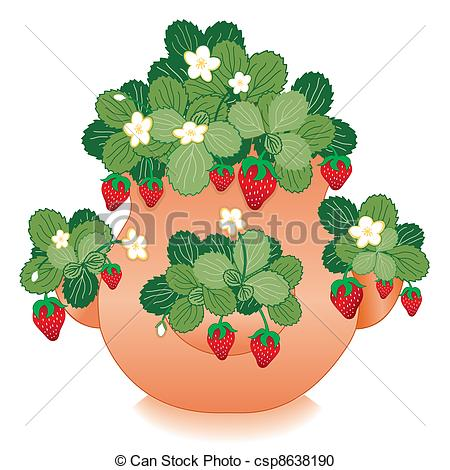 Vector Clipart of Strawberries in Clay Strawberry Jar.