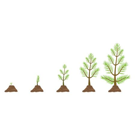 17,785 Growing Tree Stock Vector Illustration And Royalty Free.