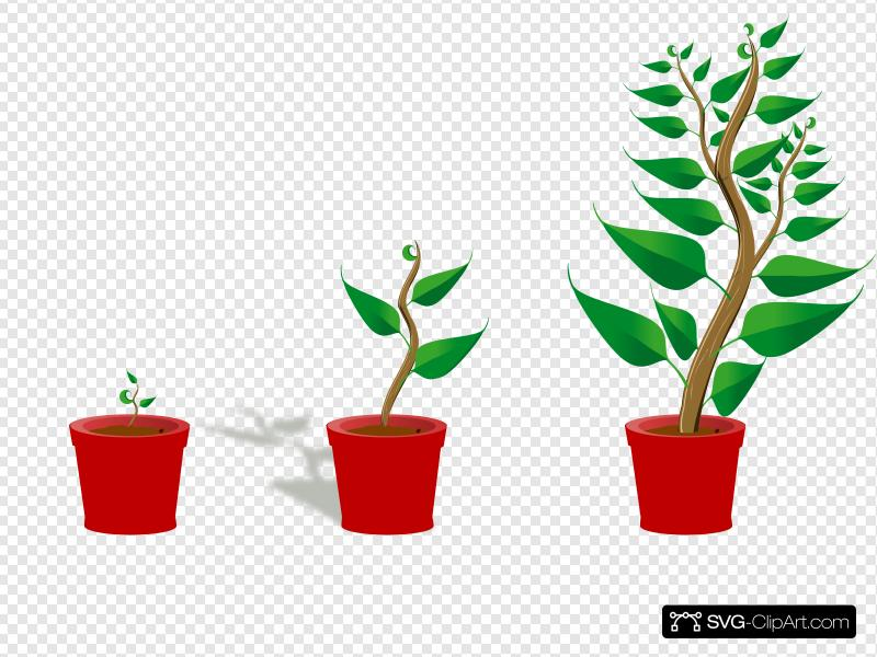 Growing Trees Clip art, Icon and SVG.