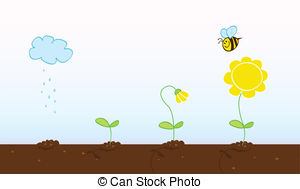Seed Illustrations and Clip Art. 36,236 Seed royalty free.