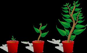 Growth Clip Art Free.
