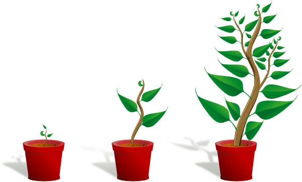 Growth Clipart.
