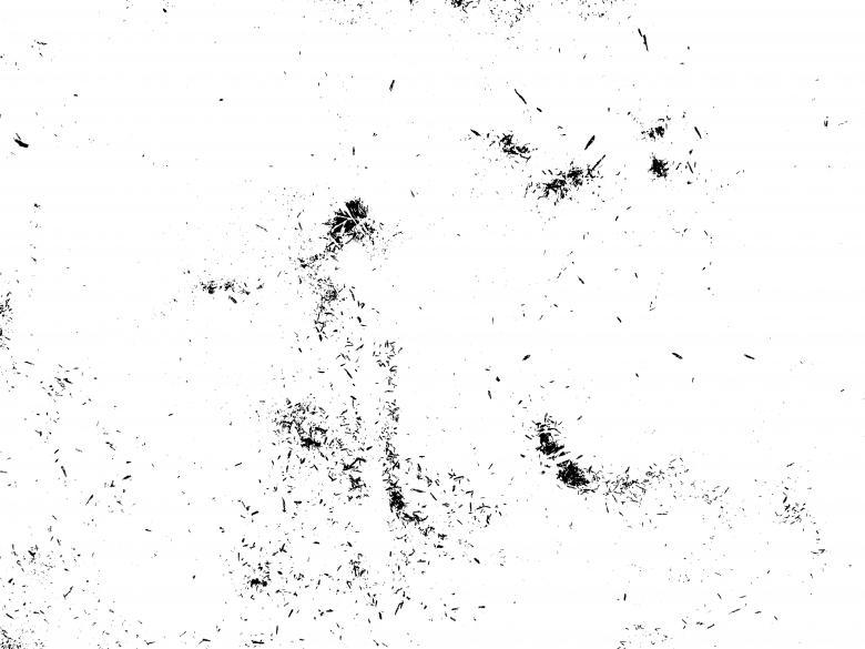Grunge Transparent Texture.