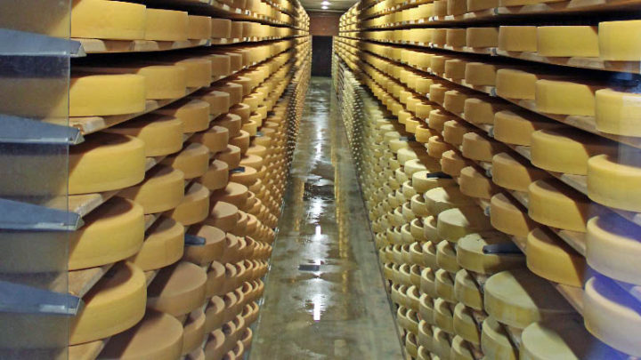 Visit La Maison du Gruyère Cheese Making Show Dairy in Switzerland.