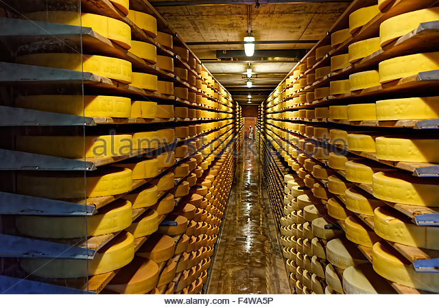 A Round Swiss Cheese Stock Photos & A Round Swiss Cheese Stock.