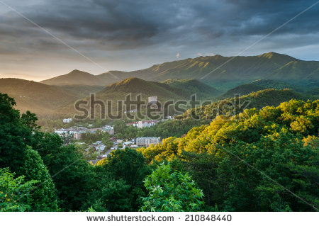 Gsmnp Stock Photos, Royalty.
