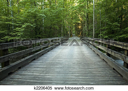 Stock Image of Bridge over Little Pigeon River, GSMNP k2206405.