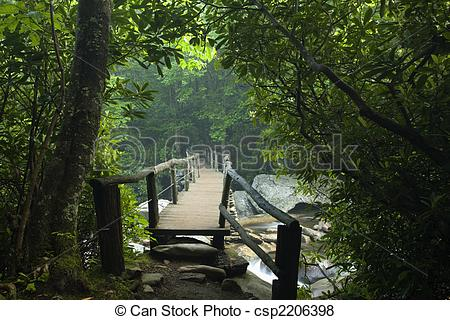 Pictures of Footbridge, Chimney Tops Trail, GSMNP.
