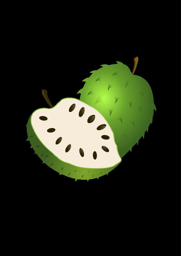 Guanabana Colombiana SVG Vector file, vector clip art svg file.