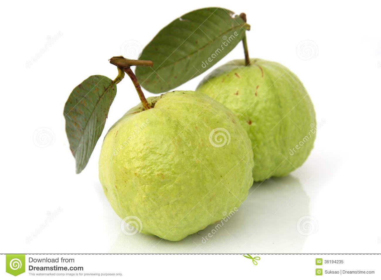 Green Guava Clipart.