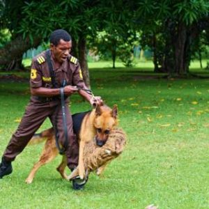 Security Services.