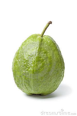 Whole Fresh Guava Fruit Stock Photo.