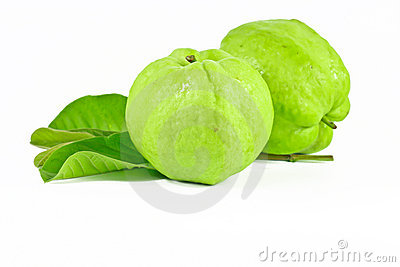 Guava Fruit Plant Clipart.