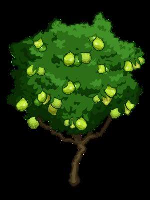 Guava tree clip art.