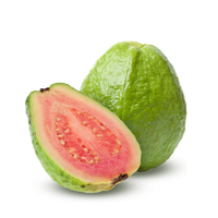 Download Guava Free PNG photo images and clipart.