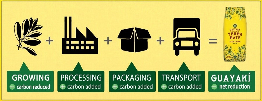 Carbon net negative for 22 years: How did Guayaki do it.