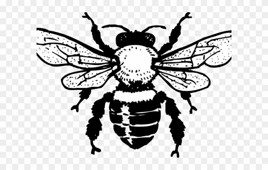 Gucci Clipart Bee.