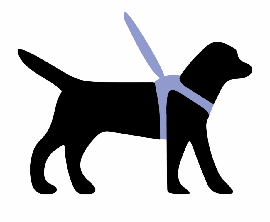 Harnesses Can Improve Health Of Guide Dogs.