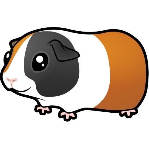 Cartoon Cute Guinea Clipart.