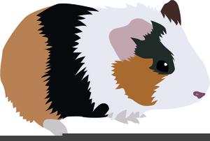 Clipart Guinea Pig.