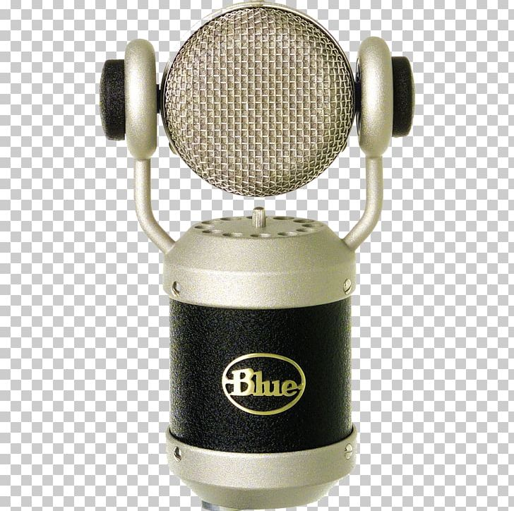 Blue Microphones Recording Studio Guitar Center Diaphragm.