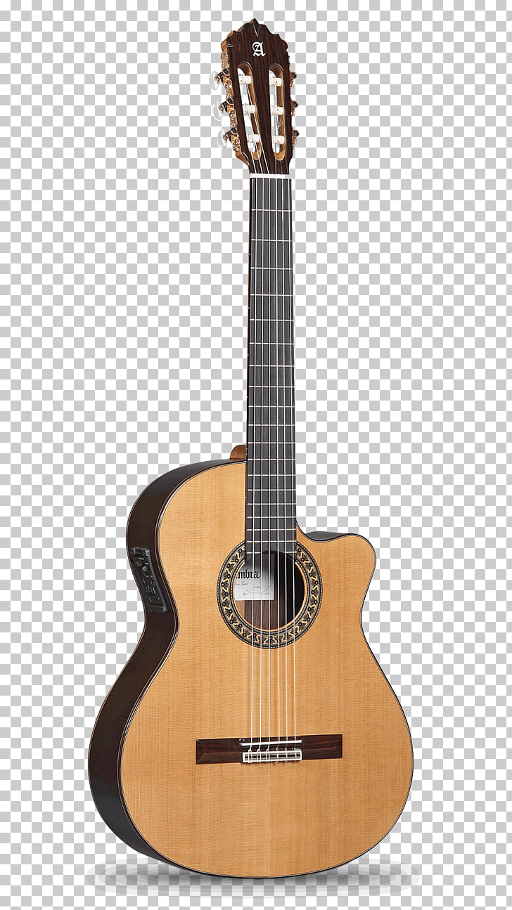 Recuerdos de la Alhambra Classical guitar Acoustic guitar.