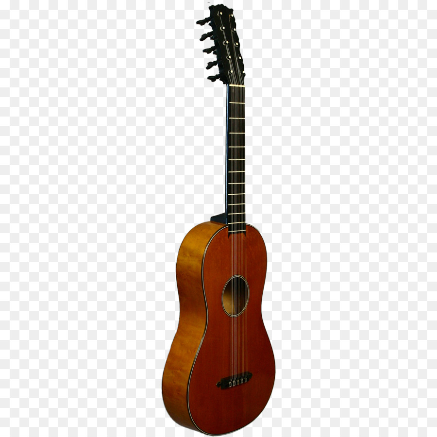 Acoustic guitar Bass guitar Cuatro Tiple.