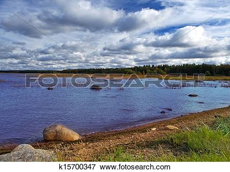 Picture of coast of the Gulf of Finland k15700347.