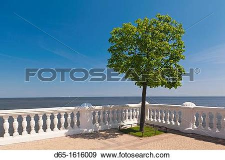 Stock Photograph of Russia, Saint Petersburg, Peterhof, Gulf of.