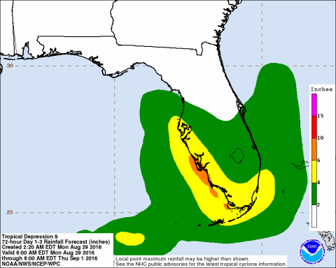A tropical storm is brewing in the Gulf of Mexico; Florida.