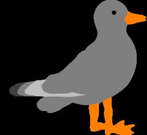 Sea gull clip art.