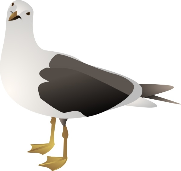 Gull clip art Free vector in Open office drawing svg ( .svg.