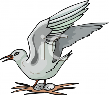 A Bird Nesting on Its Eggs in a Nest Clip Art Image.