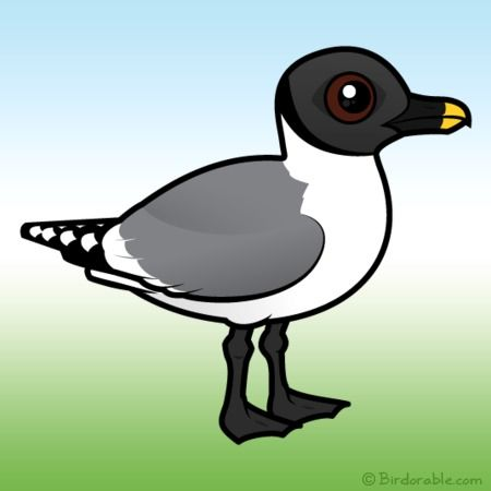 17 Best images about Birdorable Birds on Pinterest.