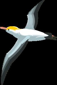 Flying Sea Gull Clip Art at Clker.com.