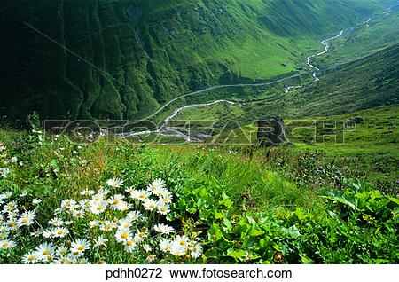Stock Photo of valley, gully, valley, ravine, suburb, suburb.
