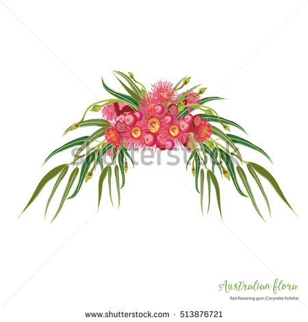 Australian Flowers Stock Vectors, Images & Vector Art.