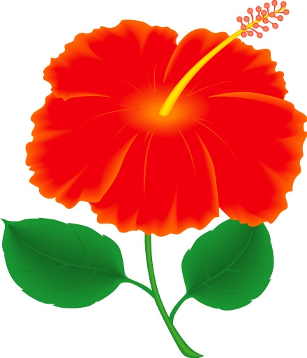 Clipart Gumamela Flower.