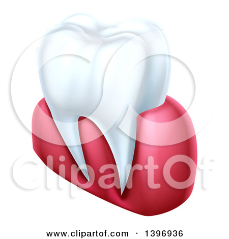 Clipart of a 3d White Tooth and Gums with a Blue and Silver.