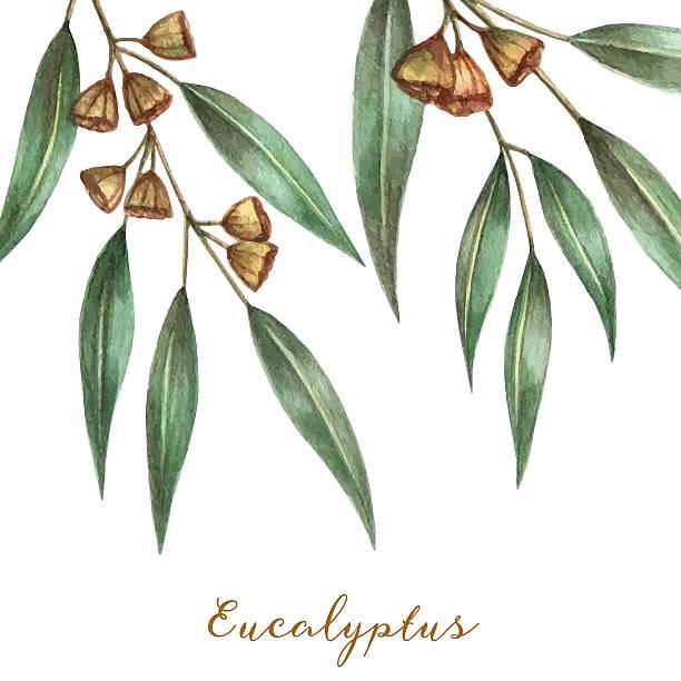 Gumtree Clip Art, Vector Images & Illustrations.