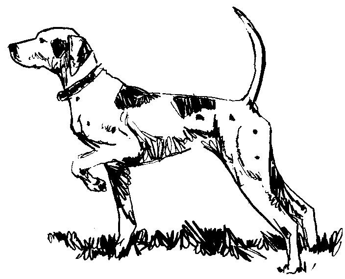 Cartoon Hunting Dog Clipart.