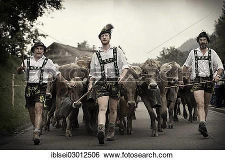 """Stock Images of """"Shepherds with a herd of cattle during the."""