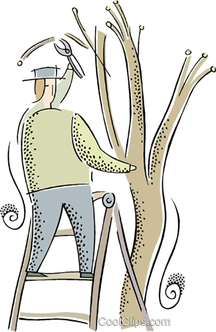 Guy Pruning Large Tree Clipart.