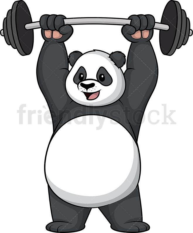 Panda Lifting Weights.